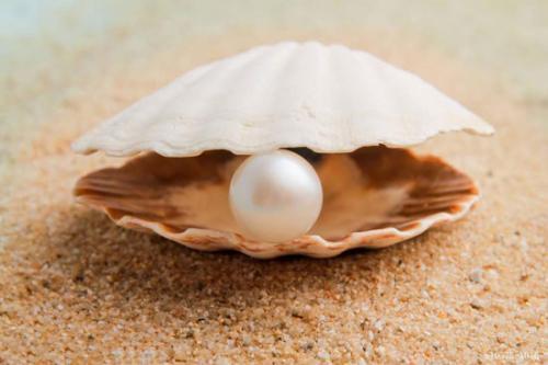 China pearl jewelry manufacturer